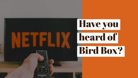 """Bird Box"" and bots: What's real?"