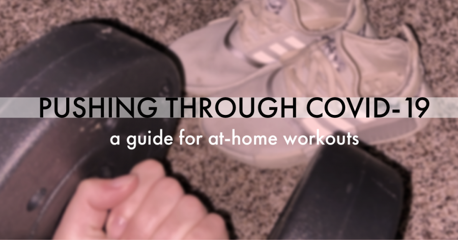 Fitness isolation: a guide to the best at home workout resources