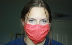 Harris County judge issues temporary face mask ordinance among backlash