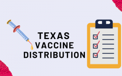 Texas's plan for vaccine distribution